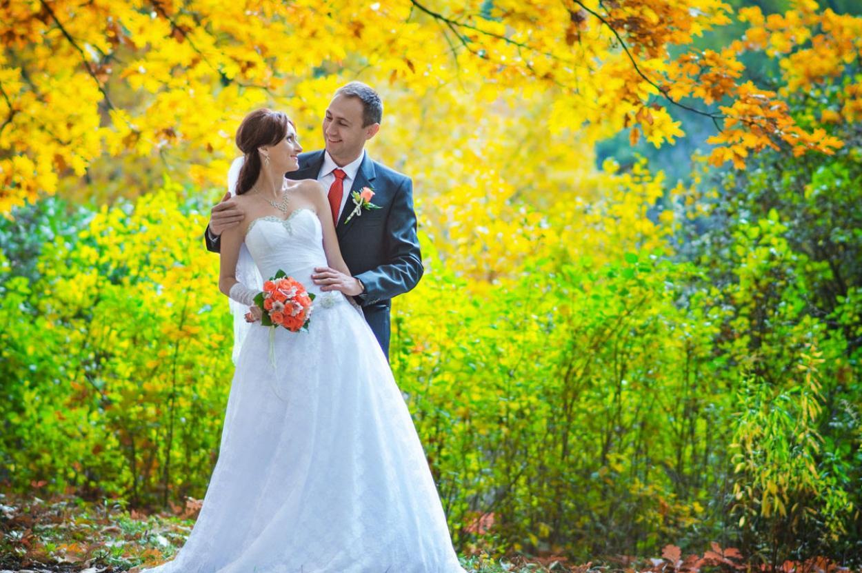растения данного полтава свадебные фотографы больницу
