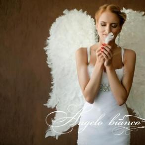 Додати до улюблених  Angelo bianco · Весільні сукні 8f6b02dc7505c